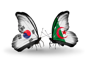 Two butterflies with flags South Korea and Algeria