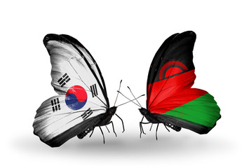 Two butterflies with flags South Korea and Malawi