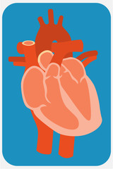 Human heart. Flat design style illustration.