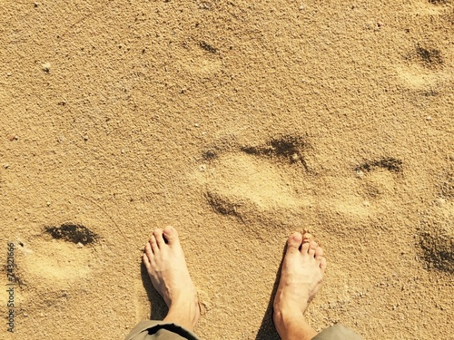 canvas print picture bare foot on sand