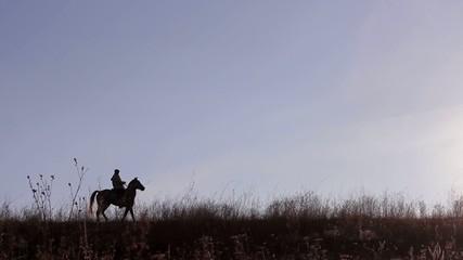 rider on horse on  beautiful background of sunset