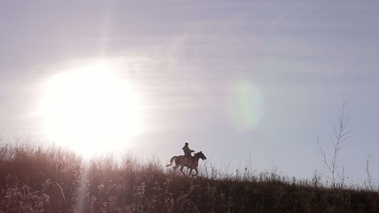 rider on horse on  beautiful background of sunset