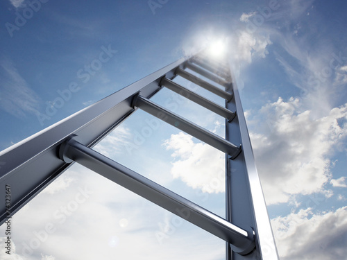 canvas print picture Ladder of success