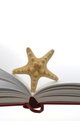 Buch Seestern