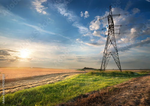 Electric pole in the field - 74326851