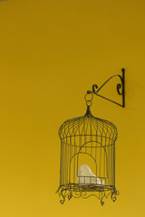 Bird cage on yellow background at the park