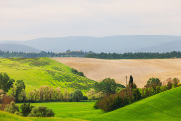 Summer rural landscape in Tuscany, Italy