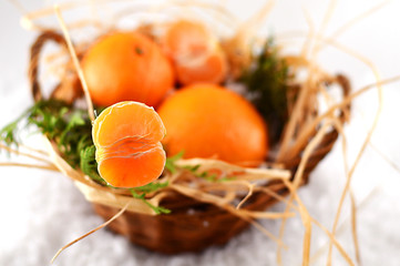 Christmas tangerines in a basket on christmas