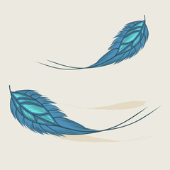 Colorful hand drawn feathers isolated