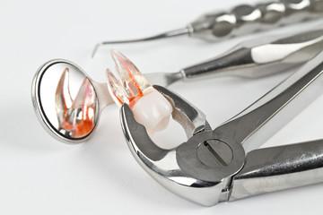 Ein Zahn und die Instrumente eines Zahnarztes