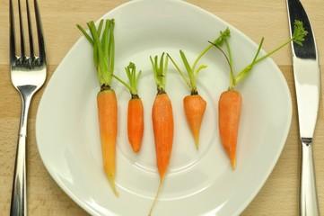 Karotten Diät