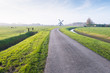 Polder landscape with a curved country road