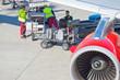 Gepäckabfertigung - 74340214