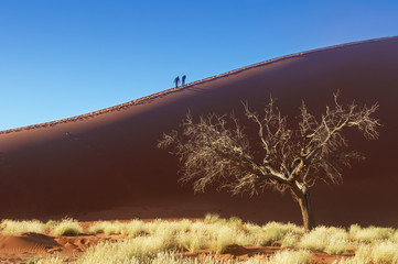 People on dunes of Namib desert, Namibia, South Africa