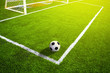 Soccer grass field with marking and ball, Sport - 74344813