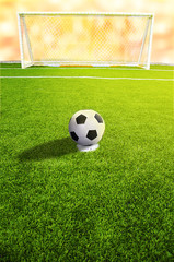 A soccer ball in front of goal