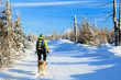Woman trekker in winter mountains with dog