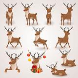 Reindeer set