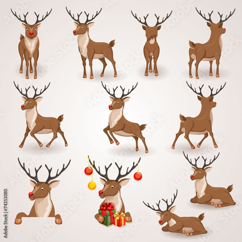 Reindeer set - 74353080
