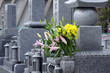 canvas print picture - Cemetery-6