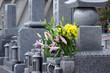 Leinwandbild Motiv Cemetery-6