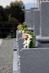Cemetery-7