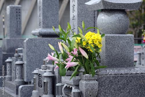 Fotobehang Begraafplaats Cemetery-6