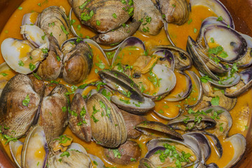 Clams with sauce