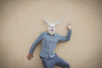 rabbit mask absurd man