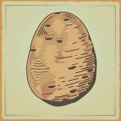 Vegetable organic food potato 2