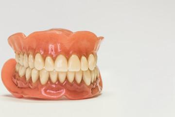Dental dentures isolated on white