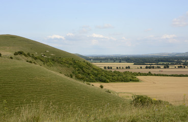 Vale of Pewsey. Wiltshire. England