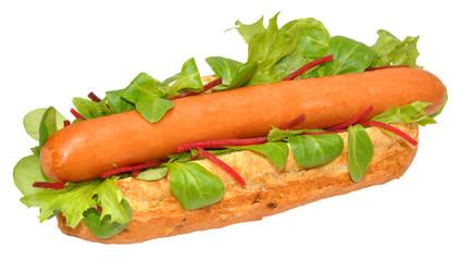 A Single Hot Dog