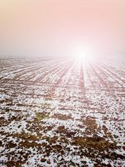 Pole w zimie wschód słońca