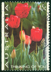 stamp shows Tulips, Thinking of You, Valentine