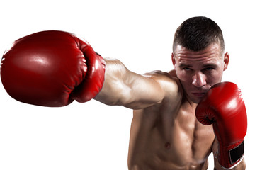 Professionl boxer is isolated on white