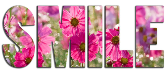 Smile text filled with pink flowers