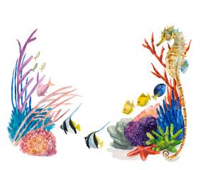Frame from underwater inhabitants. Sea life.