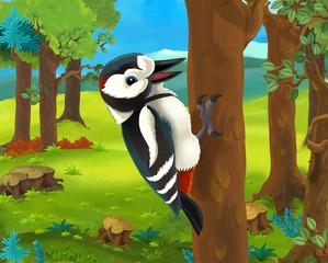 Cartoon animal scene - woodpecker - illustration