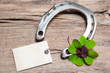 Horseshoe and four leaf clover with empty tag