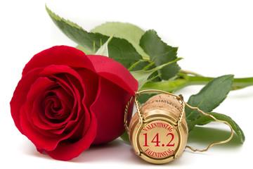 rote Rose mit Champagnerkorken - Valentinstag 14.2