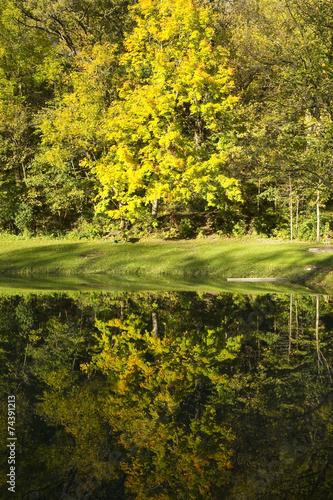 Leinwanddruck Bild Water Reflections Autumn Abstract