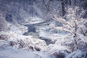 Forest river in winter snow