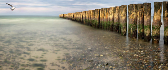 Beach with line of Groynes as background
