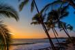 canvas print picture - Sonnenuntergang mit Palmen