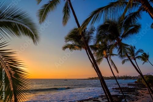 canvas print picture Sonnenuntergang mit Palmen