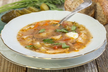 Plate with traditional Russian soup.