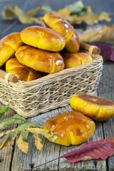 Pumpkin buns in a wicker basket.
