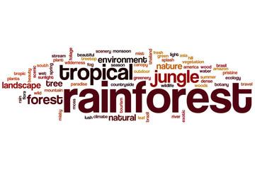 Rainforest word cloud