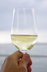 wine glass sea